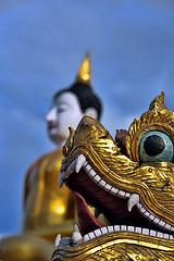 Dragon - Chiang Mai (Stphane Calvet) Tags: voyage trip travel color colors thailand nikon asia dragon asie ni thailande nikon28300 stphanecalvet stephanecalvet nikon28300mm nikor28300 d800e nikond800e stphanecalvetnikon