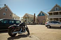 Harley Davidson Iron 883 ! (Mickael Maurice) Tags: black burlington soleil noir maisons harley ciel motorcycle bikers