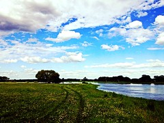 Elbe Bittkau (s_nny) Tags: clouds wiese wolken elbe altmark bittkau uploaded:by=flickrmobile flickriosapp:filter=nofilter