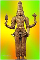 3209 - Maha Vishnu- Perumal (chandrasekaran a 32 lakhs views Thanks to all) Tags: art heritage bronze icons traditions statues images hinduism sculptures cholas parvathi artisticwork pallavas lordsiva lordvishnu vaishnavism canon60d kalyanasundarar