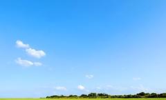 Saltfleet marshland (whistle.and.run) Tags: uk blue trees england plants cloud green nature leaves clouds digital countryside fuji britain country sunny bluesky foliage swamp fujifilm bigsky marshland saltmarsh humber englishcountryside digitalphotography marshes x10 britishcountryside arboreal saltmarshes humberside saltfleet digitalcolourphotography fujifilmx10