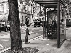 checking bus stop (Gerard Koopen) Tags: bw paris france bus streetphotography montmartre busstop frankrijk iledefrance parijs straatfotografie 2013
