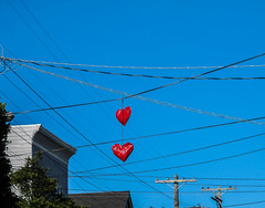 Yeah You Know Where I Left My Heart (peasap) Tags: sf