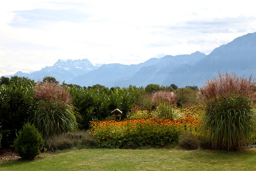 Garden view of the Alps