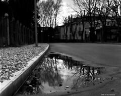Reflection - Riflessi in B&W 1969 -Grado (Paolo Bonassin) Tags: blackandwhite bw italy reflection monochrome analog blackwhite scanned riflessi digitized bianconero grado biancoenero analogica fotoanalogica monochromeshots scansionedelnegativo paolobonassin photoanalogue photodigitizedanalog fotoanalogichedigitalizzate