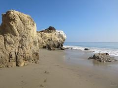 El Matador State Beach,  CA IMG_2921 (Hart Walter) Tags: spotted californiabeach penicillatus cormorantphalacrocorax elmatadorstatebeach lapiedrastatebeach sandpiperactitis maculariusbrandts