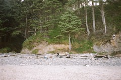 72510026 (sammywoolf) Tags: oregon coast punchbowl shortsands