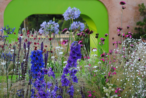 The Ecover Garden -Hampton Court Flower Show