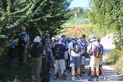 Walkers grouped day 2