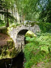 Old bridge (Tollymore forest park) (Nelleke C) Tags: bridge holiday woodland landscape vakantie unitedkingdom northernireland brug bos landschap 2013 tollymoreforestpark noordierland verenigdkoningrijk
