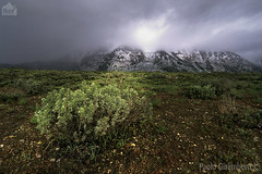 L'ultima neve, the last snow (paolo.gislimberti) Tags: parks mountainlandscape paesaggiodimontagna alpinegrassland prateriaalpina montagnaparchigrandteton