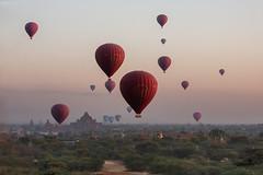 Ballons over Bagan (Wild Dogger) Tags: travel asia asien urlaub myanmar bagan tempel pagode 2015 ballonsoverbagan