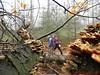 "25-02-2012 Ugelen 30 Km (11) • <a style=""font-size:0.8em;"" href=""http://www.flickr.com/photos/118469228@N03/15927002354/"" target=""_blank"">View on Flickr</a>"