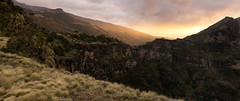 Sun it will rise soon enough. Goodbye Sun. (departing(YYZ)) Tags: africa travel sunset panorama cliff mountain mountains nature grass rock zeiss 35mm wonder landscape nationalpark warm moody open pano sony fresh fe ethiopia alpha a7 highaltitude simienmountains sonnartfe35mmf28za