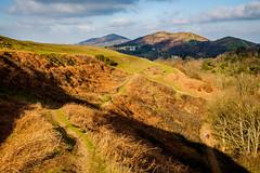 Winter landscape - Malvern hills (Macro light) Tags: people walking walks worcestershire winterlandscape britishcamp malvernhills wintersunshine