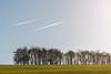 Photo of Opposite Flights