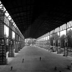 Parco Dora - Hall (StyxD) Tags: bw 6x6 tlr torino ilfordhp5 lubitel biancoenero