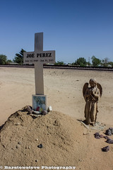 Remembering Joe Perez (Barstow Steve) Tags: california trip flower boron