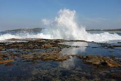 Maroubra rock platform (kingsabroad) Tags: wave maroubra rockplatform