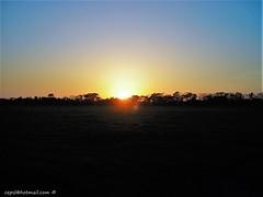 Sunset in the plain, Guanarito - Venezuela (cepsl) Tags: sunset landscape venezuela atardeceres lands llanos portuguesa