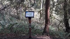 20160331_094842 (ks_bluechip) Tags: creek evans trails preserve sammamish usa2106