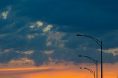 Urban Sunset city and the crow (Danny Lamontagne) Tags: blue sunset sky urban orange sun tree nature water canon river soleil eau coucher bleu ciel nuit arbre fleuve