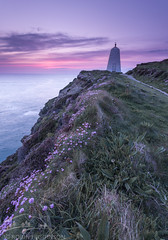 Blooming Sunset (Robin Higginson) Tags: portreath cornwall uk pepper pot sunset purple flowers summer seascape cliffs south west landscape