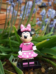 Minnie Mouse (Paranoid from suffolk) Tags: garden lego disney collection series collectible minifigs minniemouse 2016 minifigures blindbags