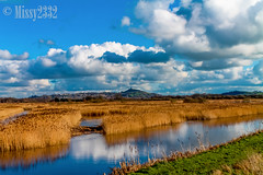 View to the Tor (cs1753) Tags: blue england sky white color nature water beauty yellow clouds rural reeds landscape countryside day outdoor scenic glastonbury clarity fluffy sunny somerset impact awe avalon