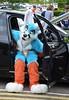 ConFuzzled 2016 450 (finbarzapek / SeanC) Tags: confuzzled cfz cfz16 2016 furry con convention fursuit fursuits furries animal costumes