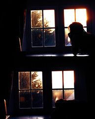 (mynameisrebecca) Tags: sunset window girl silhouette canon diptych fundraising goldenhour mynameisrebecca