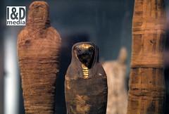 3 wee mummies (Internet & Digital) Tags: cats ancient god hawk victorian egypt ibis horus ritual mummy isis sacrifice osirus ancientegypt offerings mummified thoth mummifiedcats