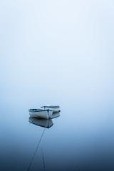 Patience (rgcxyz35) Tags: mist trees lochrusky fog scotland boats trossachs lochs