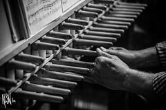 Doudou, Beffroi, Carillon (Kolson le fripon) Tags: bells noir belgium belgique mons blanc carillon cloches