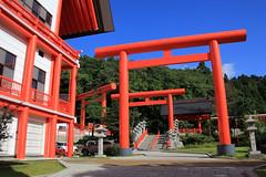 (Yorozuna / ) Tags: red color shrine niigata  torii  vermilion nagaoka       inarishrine             houtokusaninaritaisha houtokusaninarishrine