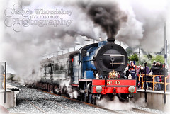 Letting Off Steam ! (James Whorriskey (Delbert Jackson)) Tags: jameswhorriskey jameswhoriskey delbertjackson derry londonderry uk ulster ireland northernireland photo photograph photographer picture aroundus impressionsexpressions catchycolors jameswhorriskeyphotography colour art bellarena queen elizabeth her majesty 2 second the royal visit north coast steam train prince phillip hrh 2016 causewaycoast emerald green royalists theresa villiers secretary of state