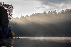 Lake in Light (Jens Haggren) Tags: olympus em1 lake forestlake light mist trees sky water reflections landscape nacka sweden
