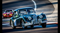 Jaguar XK 140 (1955) (Laurent DUCHENE) Tags: jaguar 140 xk 2016 tourauto peterauto dijonprenois