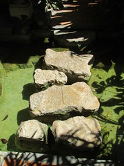 Nice, France - stepping stones (hazelflinn) Tags: path stones stepping