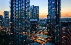 Condominium Sunset (Brady Baker) Tags: toronto canada ontario city cityscape urban skyline towers condos condominium sunset dusk golden hour blue glass reflection light glow