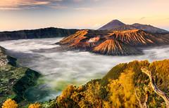 SUNRISE FROM PENANJAKAN SATU, BROMO-TENGGER-SEMERU NATIONAL PARK, EAST JAVA, INDONESIA. (amrilizan photography) Tags: indonesia java asia surabaya bromo mountbromo eastjava bromotenggersemeru