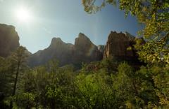 Zion National Park (somer_) Tags: zionnationalpark nationalpark outdoors adventure utah film 35mm kodak kodakektar100 southwest zion