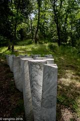 Angolo di bosco bianco (vengino) Tags: parco del chianti sculture siena toscana parchi macchiamediterranea parcosculturedelchianti