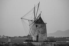DSC_5473 (Pasquesius) Tags: sunset sea tramonto mare windmills lagoon sicily rosso saline sicilia saltponds marsala muliniavento stagnone lagunadellostagnone riservanaturaledellostagnone
