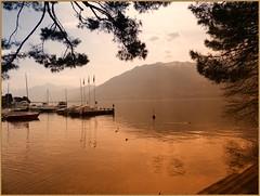 Lago Maggiore (Steffi-Helene) Tags: sea golden switzerland wasser lakes lacs lagomaggiore gewsser steffihelene