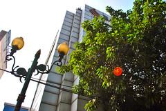 Bank Umum Servitia (BxHxTxCx) Tags: building office jakarta kantor gedung
