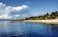 1991.10 Maria La Gorda in Kuba Provinz Pinar del Rio (gerhard_hohm) Tags: kuba pinardelrio marialagorda karibikinsel