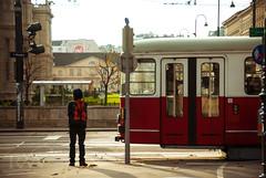 Waiting for the next train (Rachel Worthman) Tags: vienna wien travel autumn train austria europe metro streetphotography tram railcar transportation eurotrip streetcar nikond80