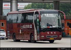 粤B 74338, MAN Lion's Star (A82 18.360 HOCL) / Yutong ZK6120R41 (Coach-digi.com) Tags: man chinabus chinesebus lionsstar businchina