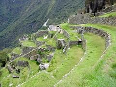 Machu Picchu-169